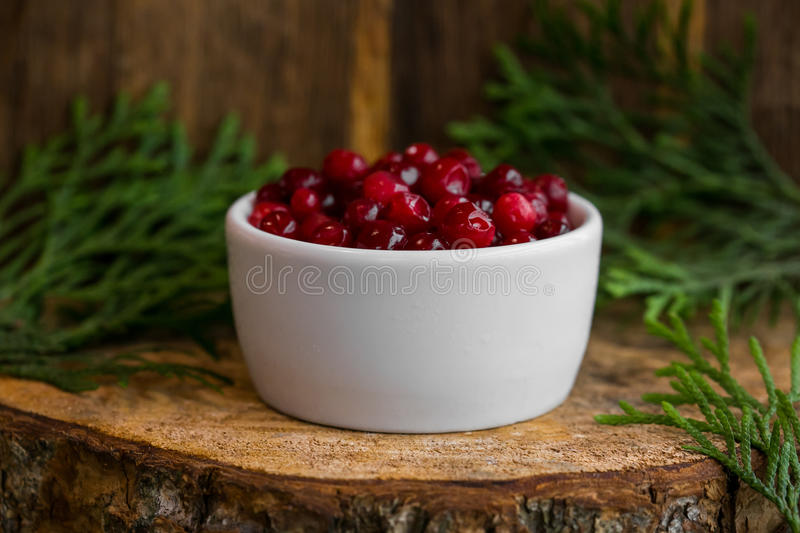 Pickled cranberries in a sweet syrup in a white bowl on the wooden background with the leaves of juniper.  royalty free stock photography