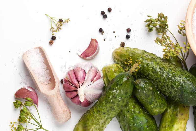 Pickled cucumber. Top view on pickled cucumber with salt and garlic over white royalty free stock image