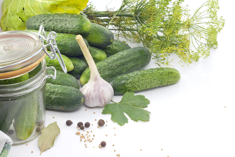 Download Pickled cucumbers stock photo. Image of flower, vegetables - 25674914