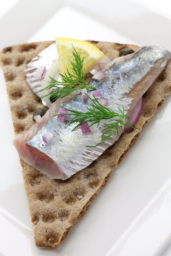 Pickled herring on crisp bread royalty free stock image