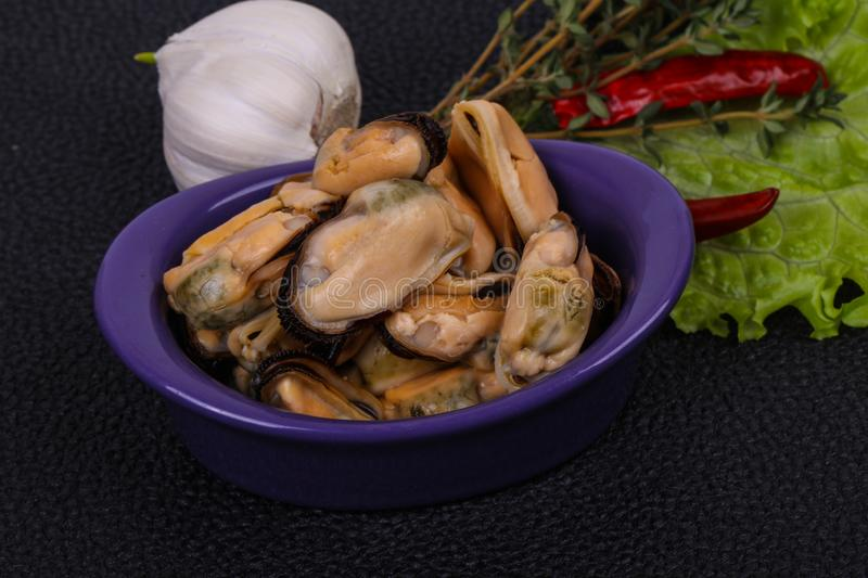Pickled mussels in the bowl served pepper, garlic and salad royalty free stock image