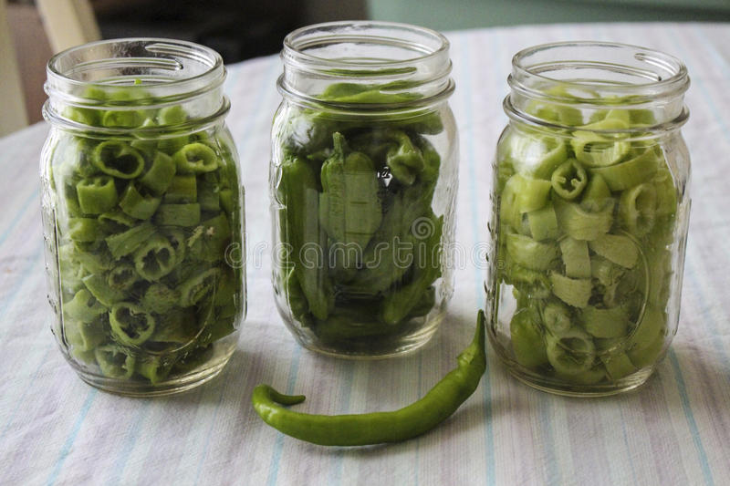 Pickled Peppers stock photos