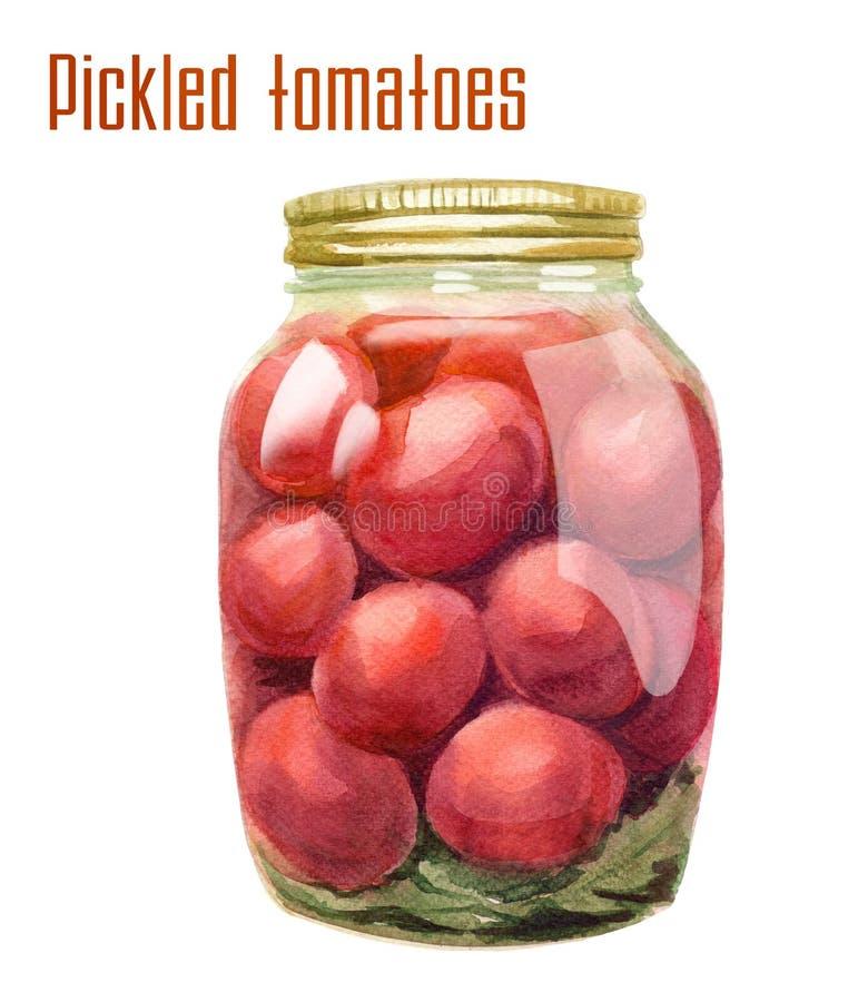 Pickled tomatoes in bottle. vector illustration