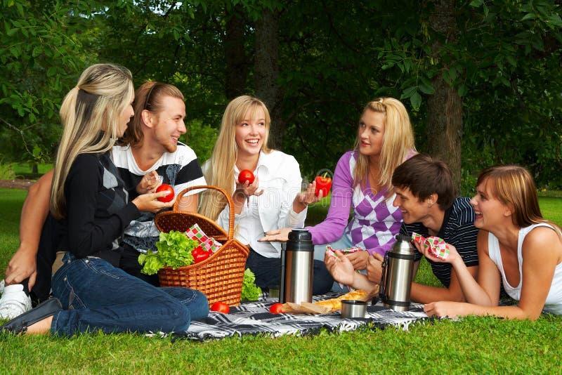 picknick fotografering för bildbyråer