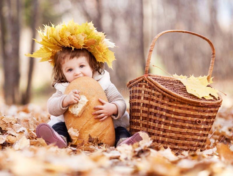 Picknick royalty-vrije stock foto's