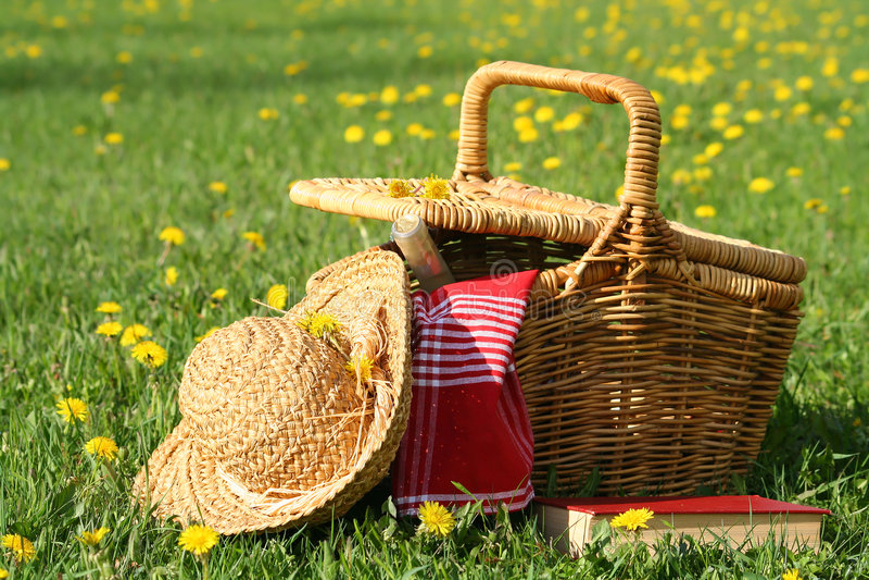 Picknick auf dem Gras