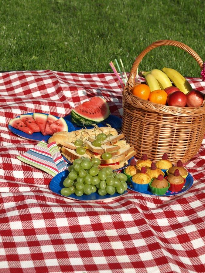 Picknick in de ochtend stock foto's