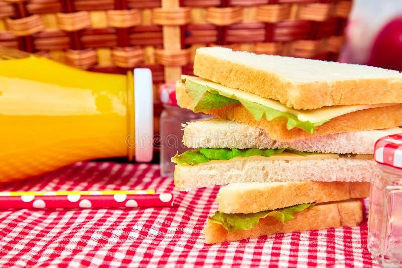 Picknick De rust van de de zomertijd stock afbeeldingen