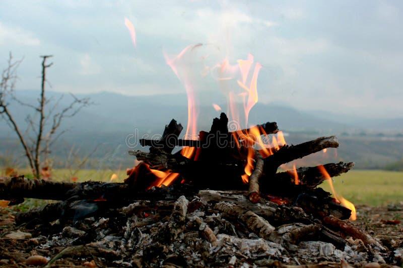 Picknick in der Natur, Herbsttrekking in der Natur, Feuer, Brennholz und Baumaste trocken lizenzfreies stockbild