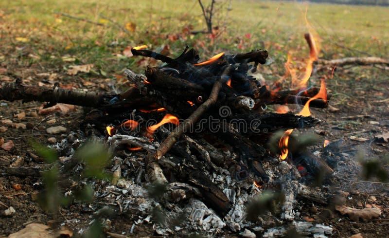 Picknick in der Natur, Herbsttrekking in der Natur, Feuer, Brennholz und Baumaste trocken lizenzfreies stockfoto
