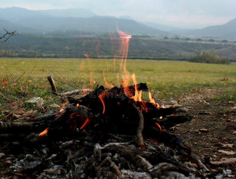 Picknick in der Natur, Herbsttrekking in der Natur, Feuer, Brennholz und Baumaste trocken lizenzfreie stockfotografie