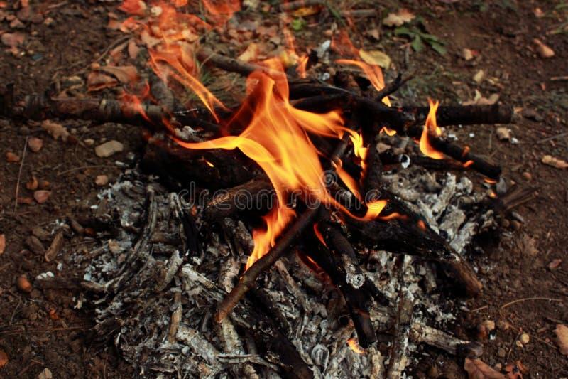 Picknick in der Natur, Herbsttrekking in der Natur, Feuer, Brennholz und Baumaste trocken lizenzfreie stockfotos