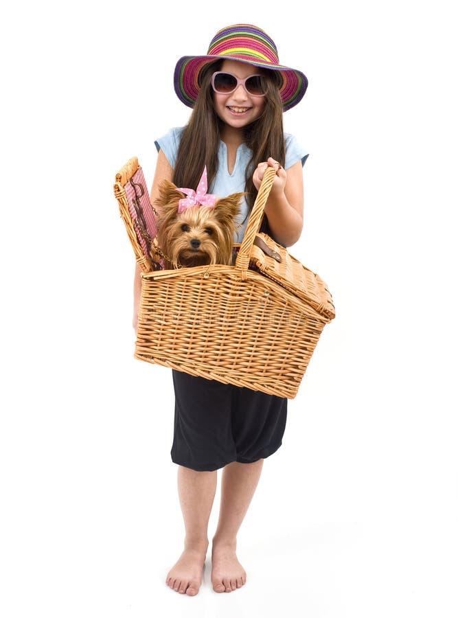 picknick för korghundflicka royaltyfria foton