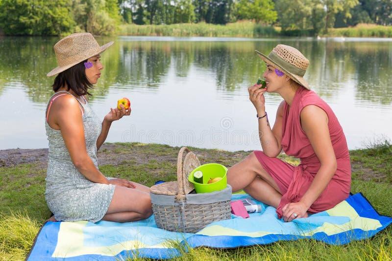 Picknick för två kvinnor på vattensidan royaltyfri bild