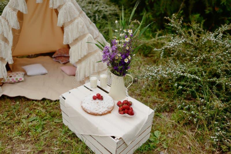 Picknickdatum I Skog, Tält Och Fällstolar, Grå Minibuss Med