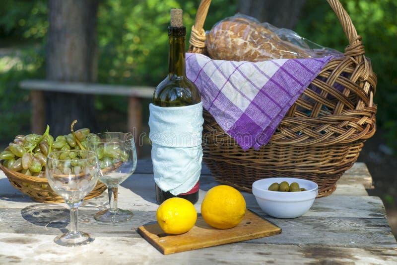 Picknick i höst, vin och druvor royaltyfria bilder
