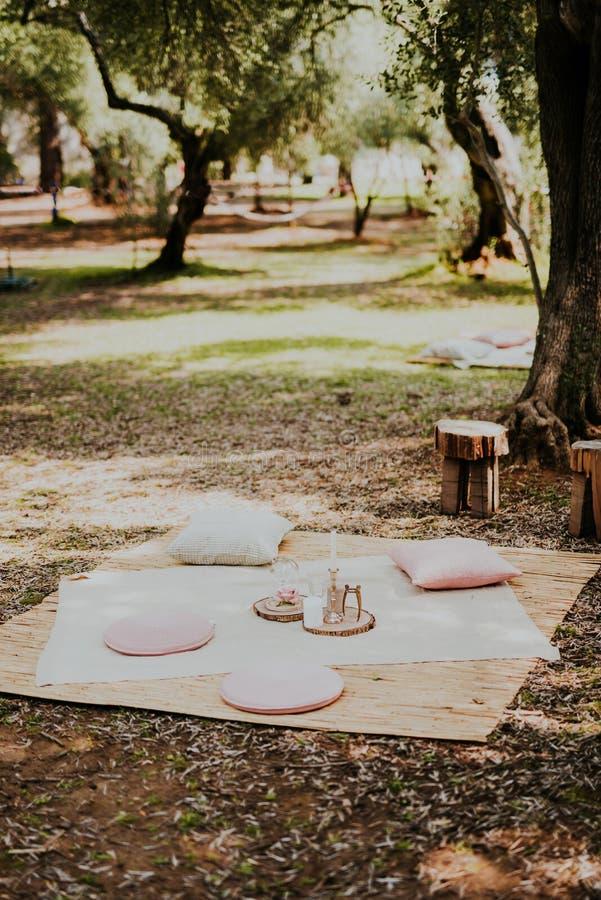 Picknick i olivgrönt spår arkivbild