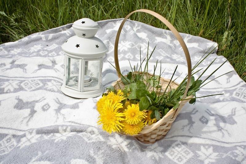 Picknick, korg med dandelios och lampa royaltyfri bild