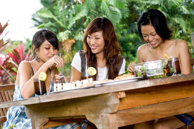 Picknick med vänner royaltyfria foton