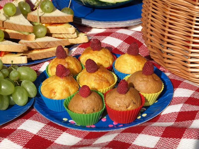 Picknick met muffins stock afbeeldingen