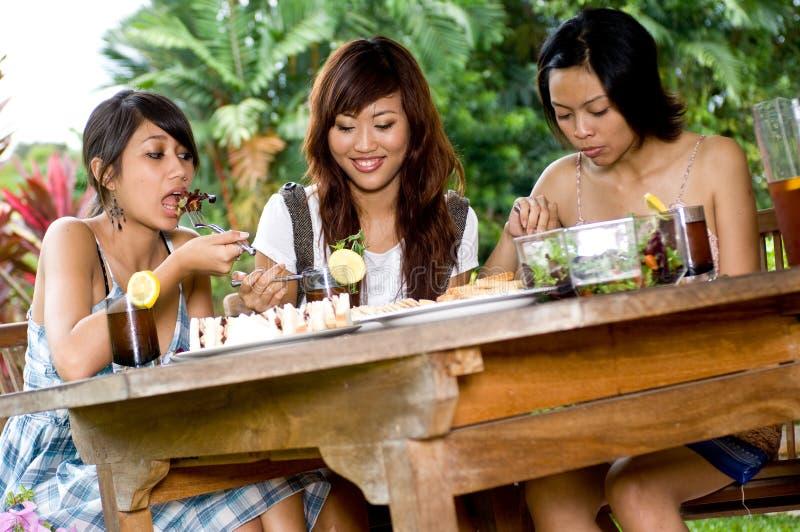 Picknick mit Freunden lizenzfreie stockfotografie