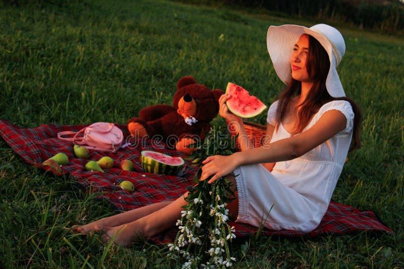 Picknick op een groene weide in de zomer royalty-vrije stock foto's