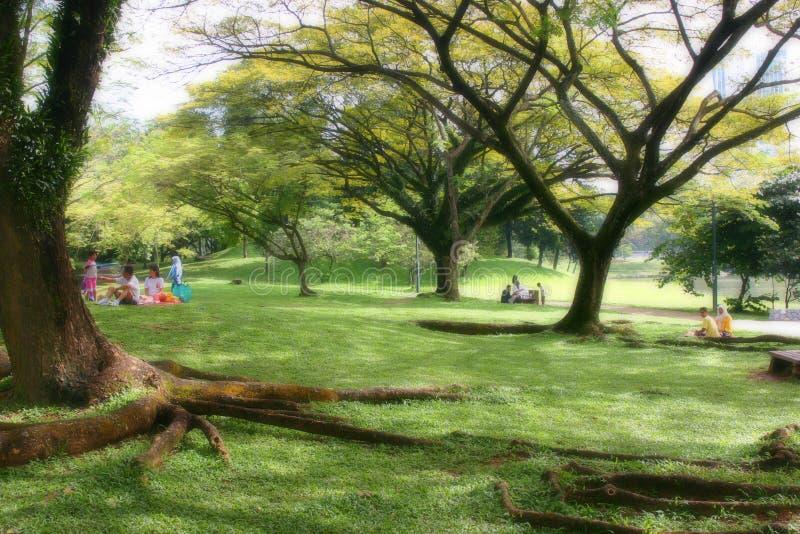picknick sunday royaltyfri foto