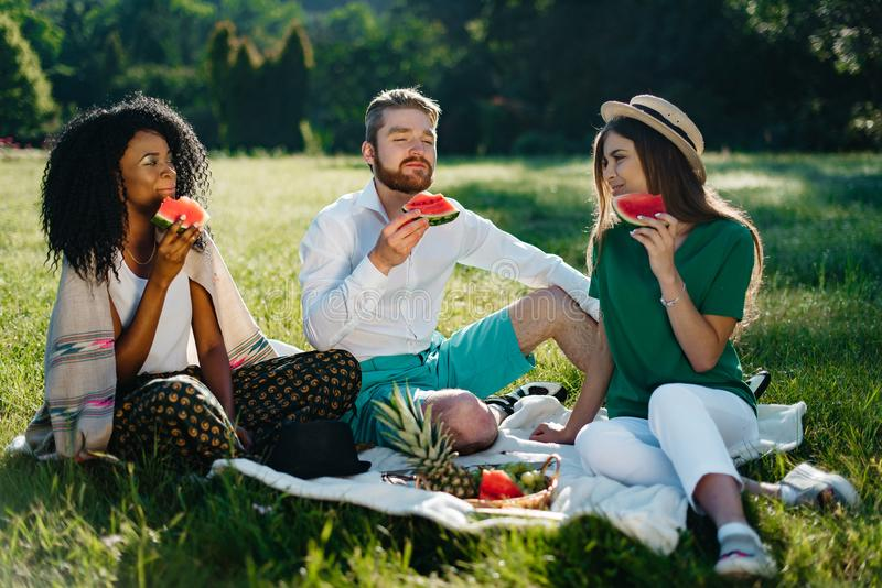 Picknick van drie multirasvrienden De mooie Afrikaanse vrouw en haar Kaukasische mannelijke en vrouwelijke vrienden genieten van stock fotografie
