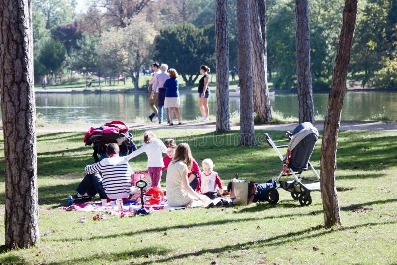 Picknick van een grote familie op de Bank van een vijver stock afbeelding