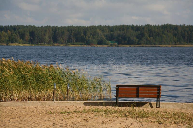 Picknickbank voor rust op een strand in de herfst - stil meer provinciaal park royalty-vrije stock afbeeldingen