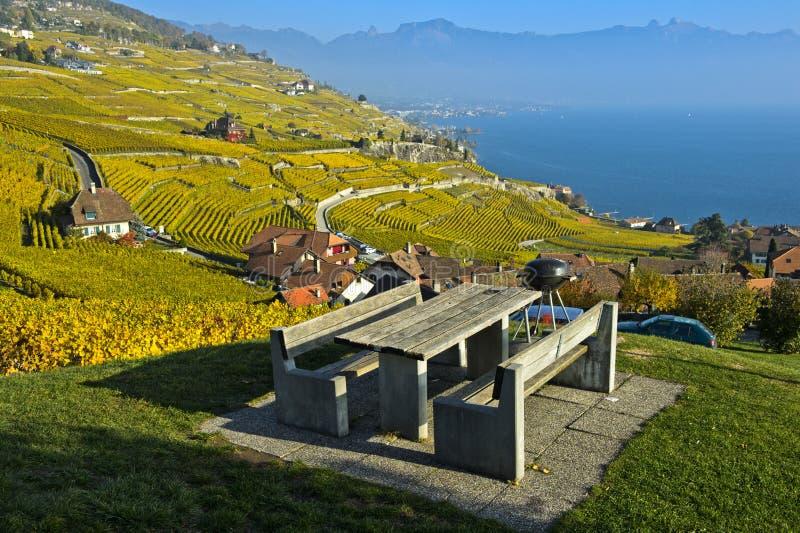 Picknickgebied in de lavauxwijngaarden, Lavaux, Vaud, Zwitserland royalty-vrije stock afbeelding
