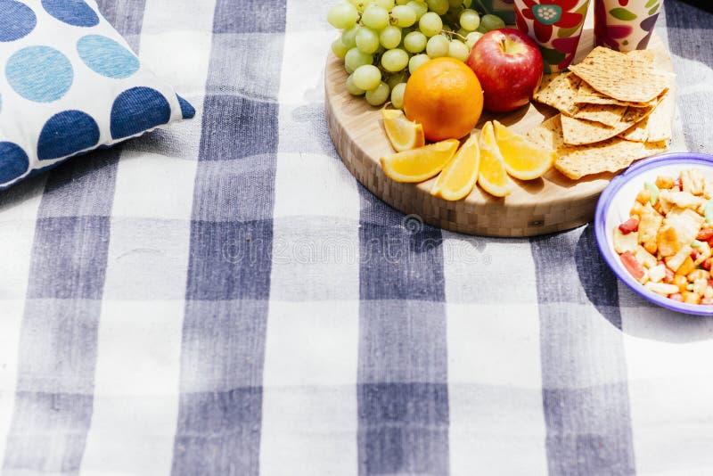 Picknickinställning med ny frukt och mellanmål royaltyfri foto