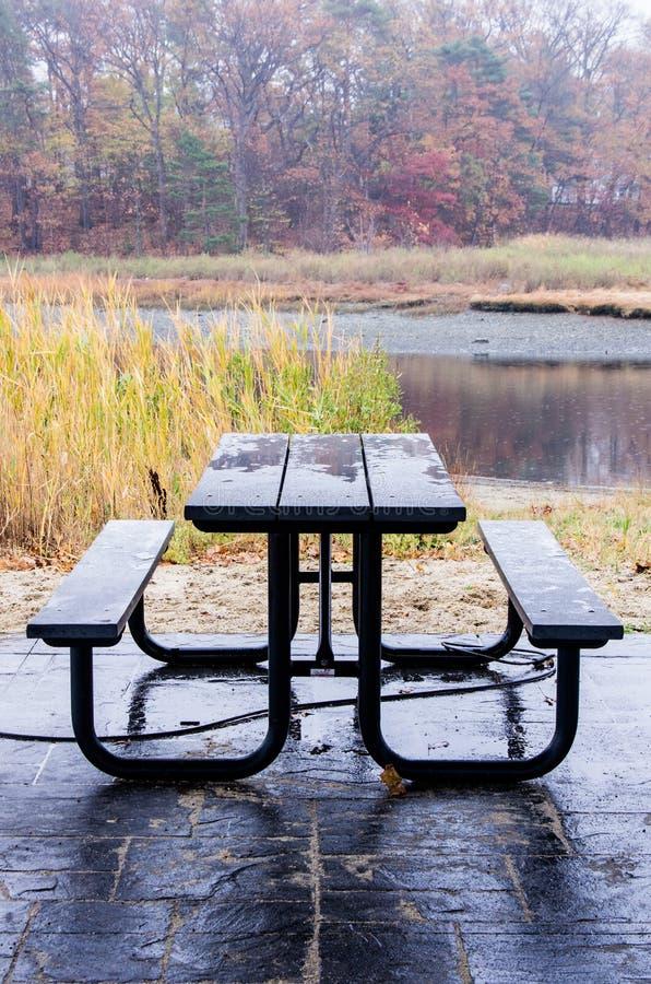 Picknicklijst bij moerassen stock foto