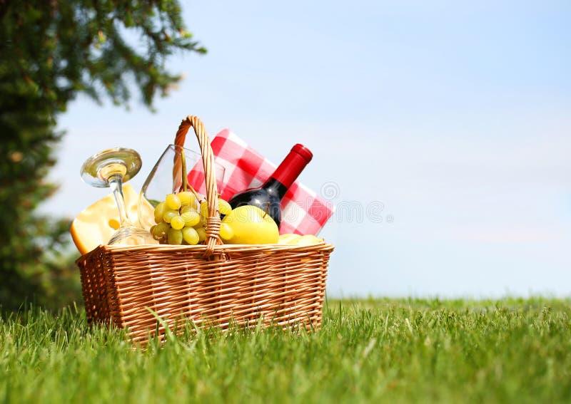 Picknickmand op groen gebied stock foto's