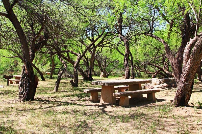 Picknickområde för El Bosquecito i kolossalt grottaberg parkerar royaltyfri fotografi