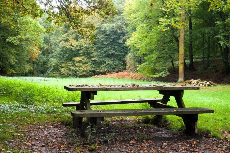 Picknickplatz lizenzfreie stockfotos