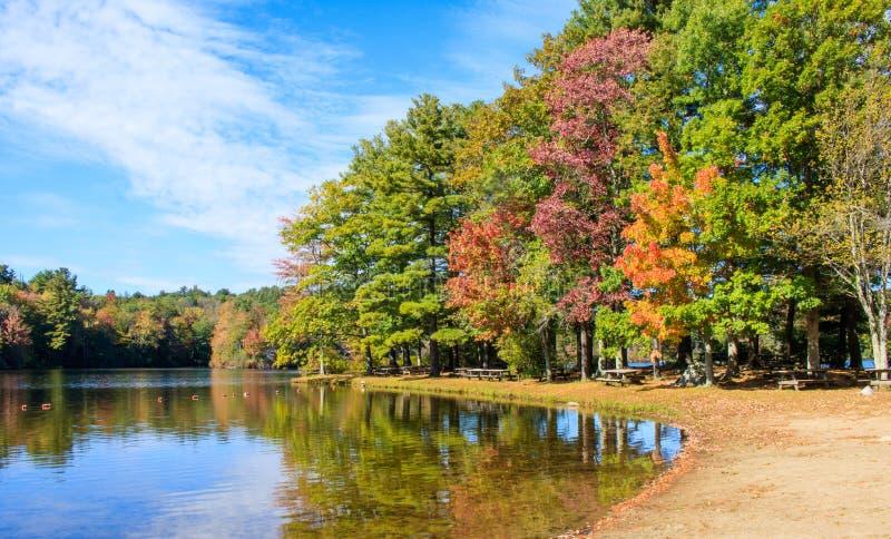 Picknickplatz unter Herbstlaub auf dem Ufer von Gratteich lizenzfreie stockbilder