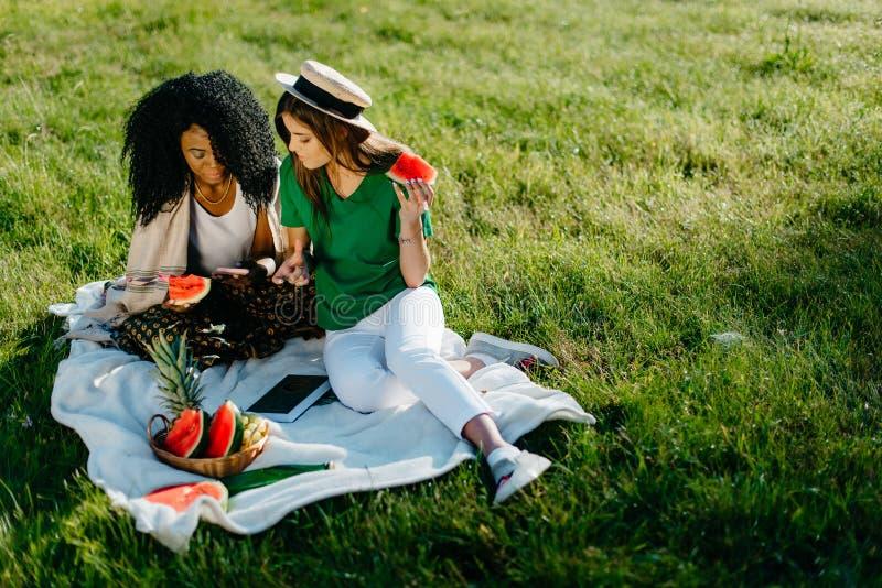 Picknickportret van twee vrienden van het multi-rasmeisje Zij lachen terwijl het letten van op iets grappig op de mobiele telefoo royalty-vrije stock afbeelding