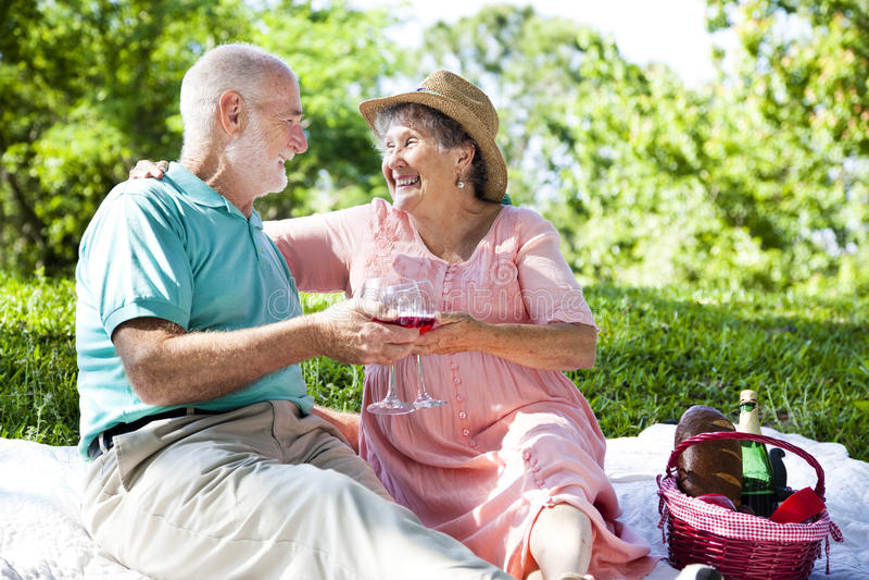picknickromantikerpensionärer fotografering för bildbyråer