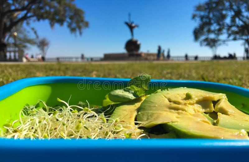 Picknicksallad på flodstranden parkerar Jacksonville Florida arkivbilder