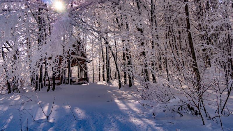 Picknickschuilplaats in bos met sneeuw wordt behandeld die stock afbeelding