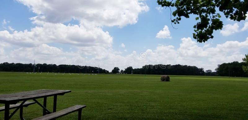 Picknicktabell i en solbelyst äng - Mississippi kullar royaltyfri fotografi