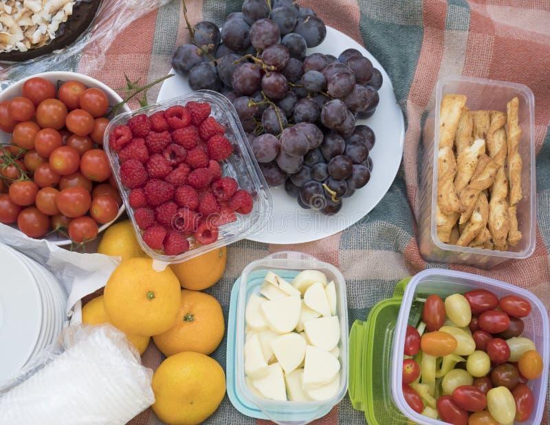 Picknicktabellen, mat tjänade som utomhus på tygpicknicktorkduken Slut upp, b?sta sikt Nya grönsaker och frukter, druvor arkivbilder