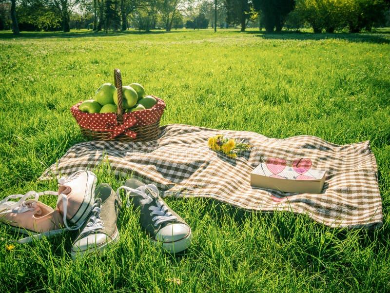 Picknicktisch bedeckt mit karierter Tischdecke lizenzfreies stockbild