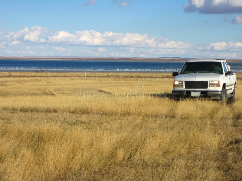 Pickup in the blowing grasses stock image