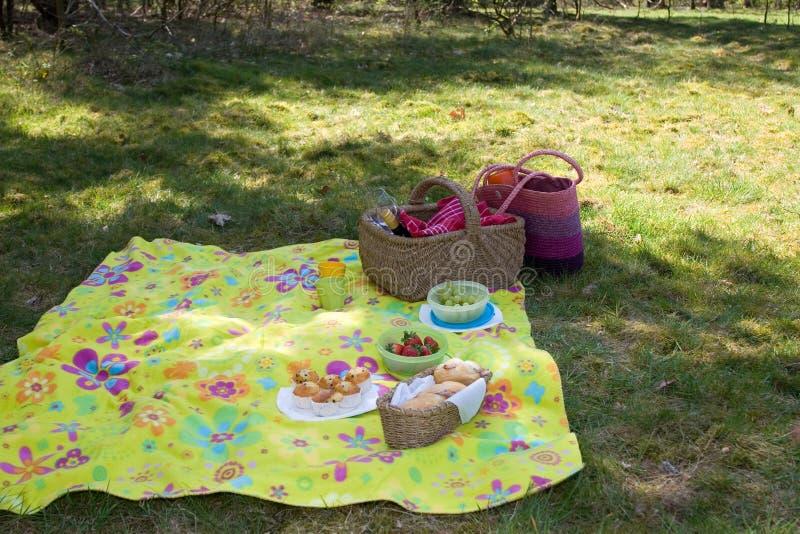picnic έτοιμο στοκ φωτογραφίες με δικαίωμα ελεύθερης χρήσης