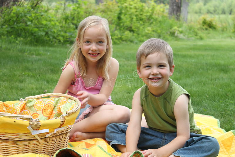 picnic αμφιθαλής στοκ εικόνες