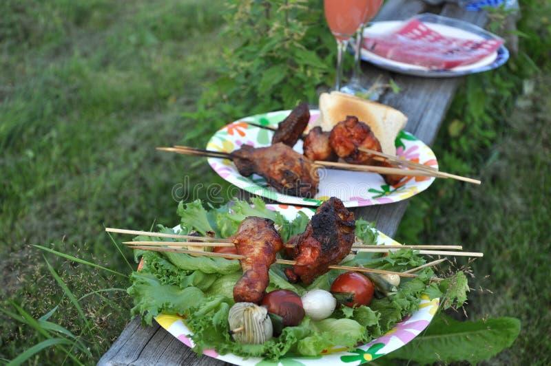 picnic φύσης στοκ εικόνες με δικαίωμα ελεύθερης χρήσης