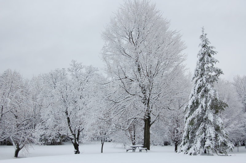 picnic χειμώνας στοκ εικόνες