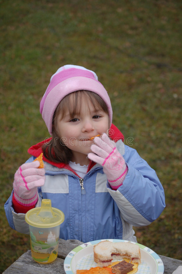 picnic χειμώνας στοκ φωτογραφία